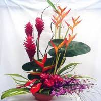 flower delivery honolulu honolulu flower delivery archives with our aloha