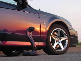mustang cobra ford grille emblem cobra snake with bracket gt500 2007 2014 ford