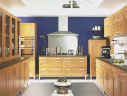 shaker kitchen cabinet plans kitchen shaker kitchens designs home design new marvelous