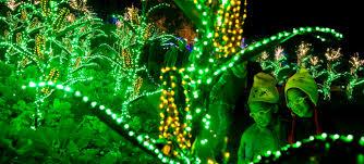 Holiday Brilliant Spectacular Light Show by Garden Lights Atlanta Botanical Garden
