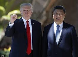 trump developed an outstanding relationship with xi daily mail