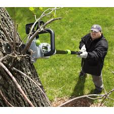 earthwise 18v cordless 2 in 1 combo chainsaw pole saw