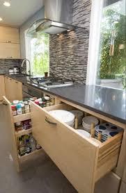 Modern Kitchen Storage Modern Kitchen Design Trends 2016 Ideas Transforming Kitchen