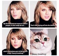 Heavy Breathing Meme - taylor swift s favorite meme is the heavy breathing cat