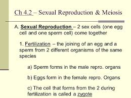 chapter 4 cell reproduction ppt video online download