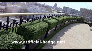 artificial hedge application u0026 boxwood hedge application for
