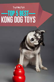 Best Dog Bed For Chewers Top 5 Best Kong Dog Toys For Puppies And Dogs 2017