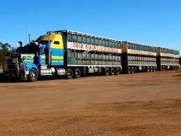 how much is a kenworth truck 10 best road trains images on pinterest road train big trucks