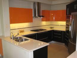Contemporary Kitchen Designs Photos Contemporary Kitchen Design Modern Kitchen San Diego By