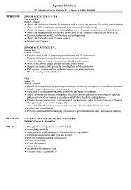 senior accountant resume format