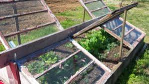 how to turn your raised bed into a cold frame stoney creek farm