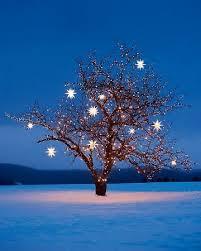 martha stewart christmas lights ideas christmas star decorations lights fantastic martha stewart and star
