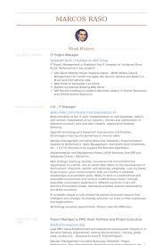 it project manager resume samples visualcv resume samples database