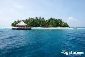 w maldives hotel oyster com review u0026 photos