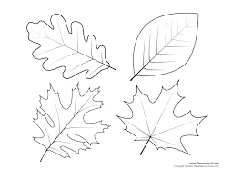 oak leaf template coloring page free download