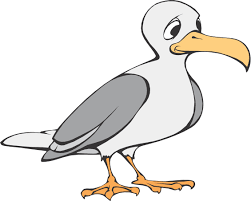 cartoon birds seagull 3 bird litle pups