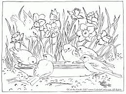 nature coloring pages nature coloring page for kids printable free