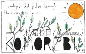 what is the latin root meaning light 11 untranslatable words from other cultures ella frances sanders