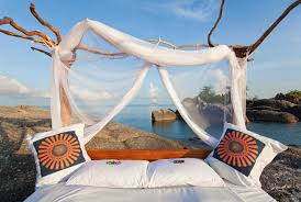 africa u0027s 5 million star safari lodges 10 best starbed experiences