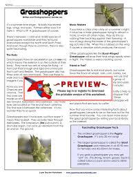 Worksheets Com Grasshoppers Super Teacher Worksheets