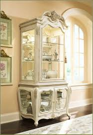 Curio Cabinet Lighting Curio Cabinet Underabinet Lights Lightingeiling Fans The Home