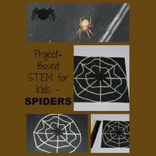 stem education and project based learning lesson plan spiders