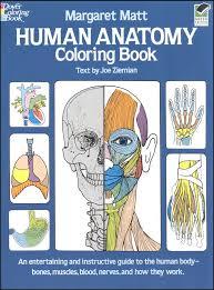 the anatomy coloring book kaplan kaplan anatomy coloring book