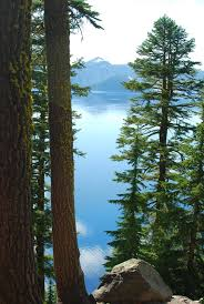 file composition of tree lake mountain jpg wikimedia commons