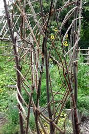 the violet fern project rustic leaf trellis