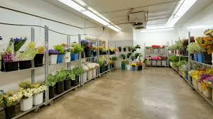 flower wholesale products gallery anchorage flower wholesale
