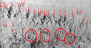 les chambres à gaz ont elles vraiment existées chambre a gaz faux 100 images le canular juif des chambres à