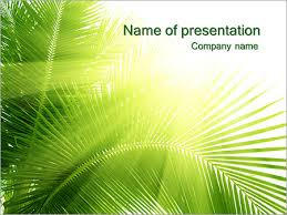 coconut tree powerpoint template u0026 backgrounds id 0000003586