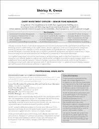 senior executive resume exles executive summary resume resumeexles for executive summary with