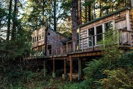 Tree House Home by A U0027treehouse U0027 Over A Creek Our Coastour Coast