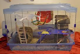 Cheap Rat Cage New Cage For My Roxie The Rat By Angi Shy On Deviantart