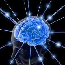 ultramind solution book fix your broken brain by healing the ultramind solution my notes part 2 startgainingmomentum