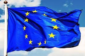 The European Flag Planting Seeds Of Future Eu Projects Coordinators University Of