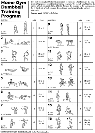 Bench Press Workout Routine Chart Dumbbell Training Two Dumbbells And A Flat Bench Are The Only