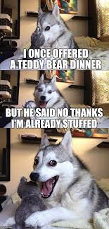 Bear Stuff Meme - bad pun dog meme imgflip