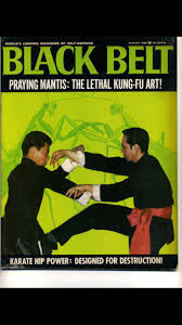 15 best chinese kung fu wu su association images on pinterest