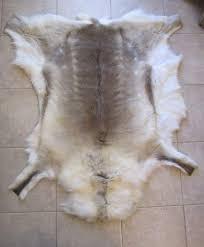 tappeti di pelliccia tappeto in renna pelliccia finlandia nuovo a mantova kijiji