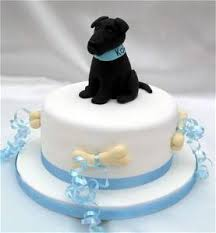 how to throw a dog birthday pawty birthday cakes for dogs
