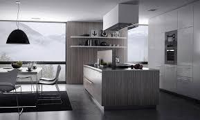 Kitchen Design Models by Grey Kitchen Design Property Extraordinary Interior Design Ideas