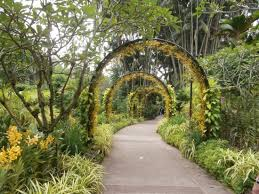 Botanical Gardens Discount Singapore Botanic Gardens 2018 All You Need To Before You
