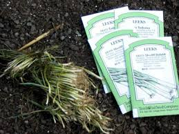 tips on growing leeks scallions and chives diy
