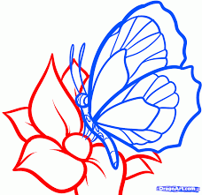 how to draw a butterfly on a flower butterfly and flower 6