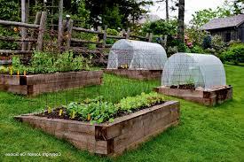 How To Start A Garden Bed Garden Ideas Raised Bed Gardening How To Start A Raised Bed