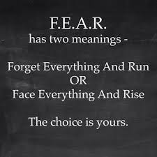 soulmate quotes fear has two meanings chose what one suits you