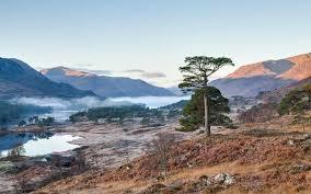 glen affric estate pippa middleton s scottish honeymoon estate could be yours next