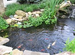Small Water Features For Patio Residential Water Feature Landscaping Buck U0026 Sons
